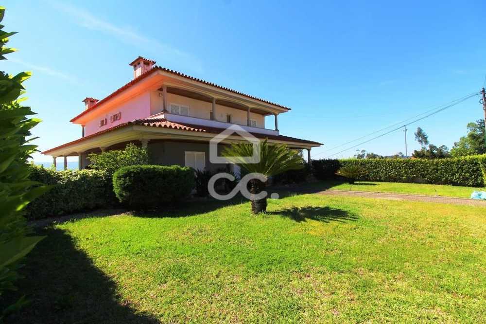 Cruz Vila Nova De Famalicão house picture 77065