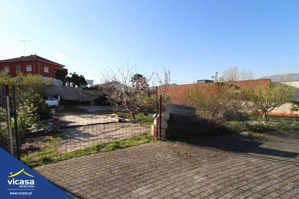 Deão Viana Do Castelo terrain picture 58453