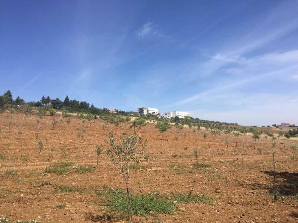Samil Bragança terrain picture 68445