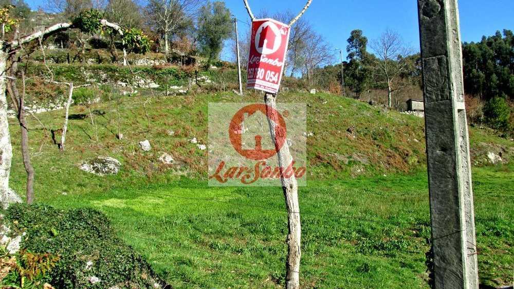 Ribeiros Fafe terrain picture 69613
