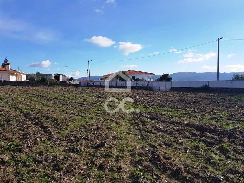 Delães Vila Nova De Famalicão terrain picture 74978