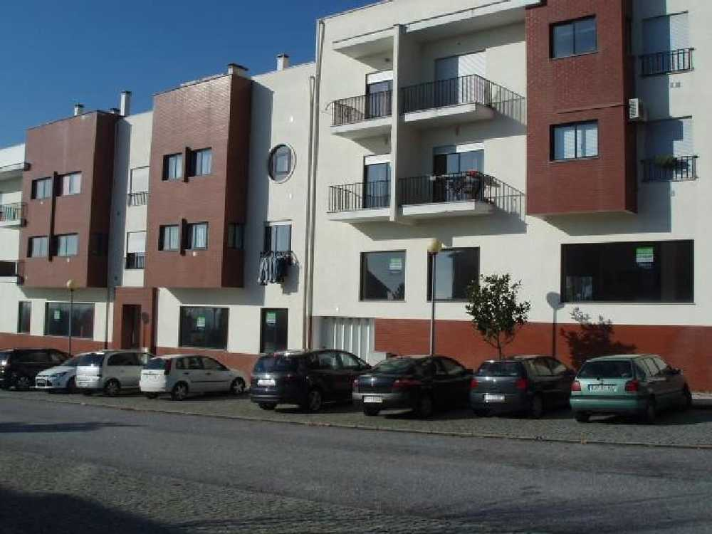 Rio Lamego casa foto #request.properties.id#
