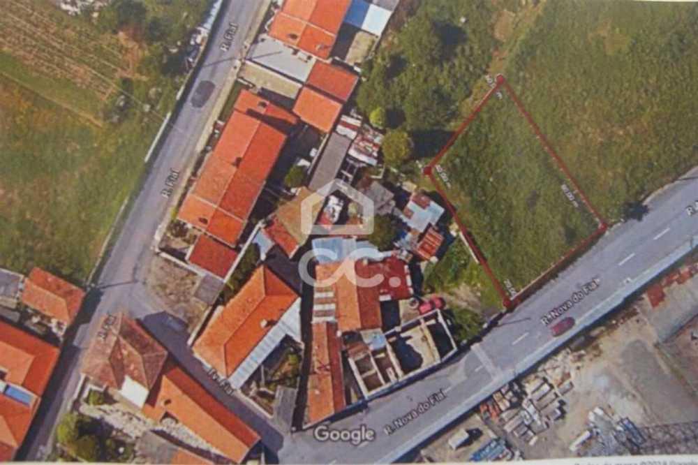 Tarei Santa Maria Da Feira terrain picture 75235