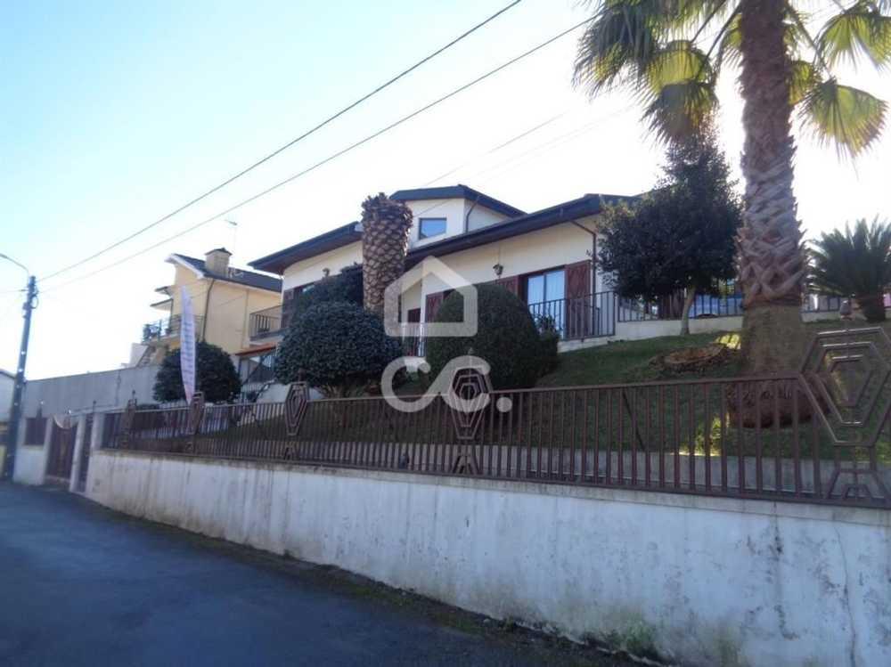 Covas Lousada house picture 78049