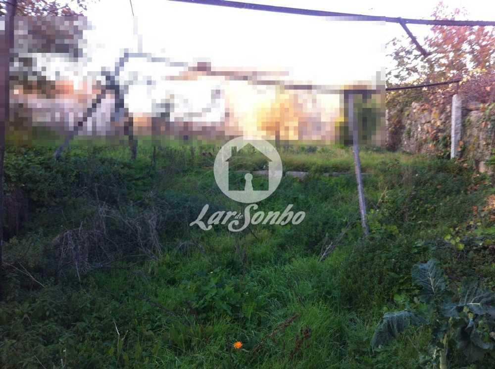 Gião Vila Do Conde terrain picture 56655