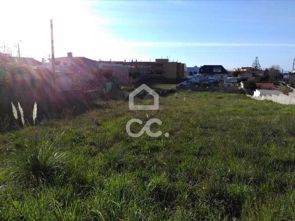 São Martinho Vila Nova De Gaia terrain picture 75193