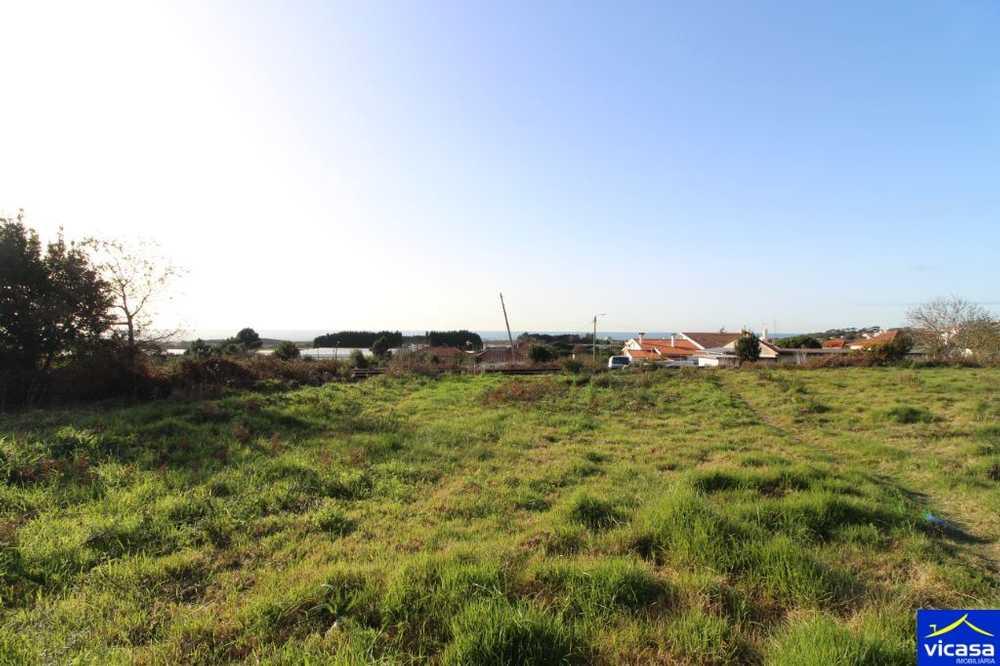 Carreço Viana Do Castelo terrain picture 58407