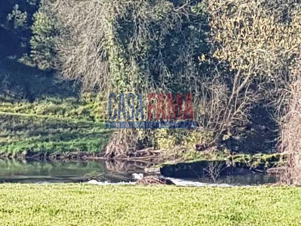 Lousado Vila Nova De Famalicão terrain picture 82996