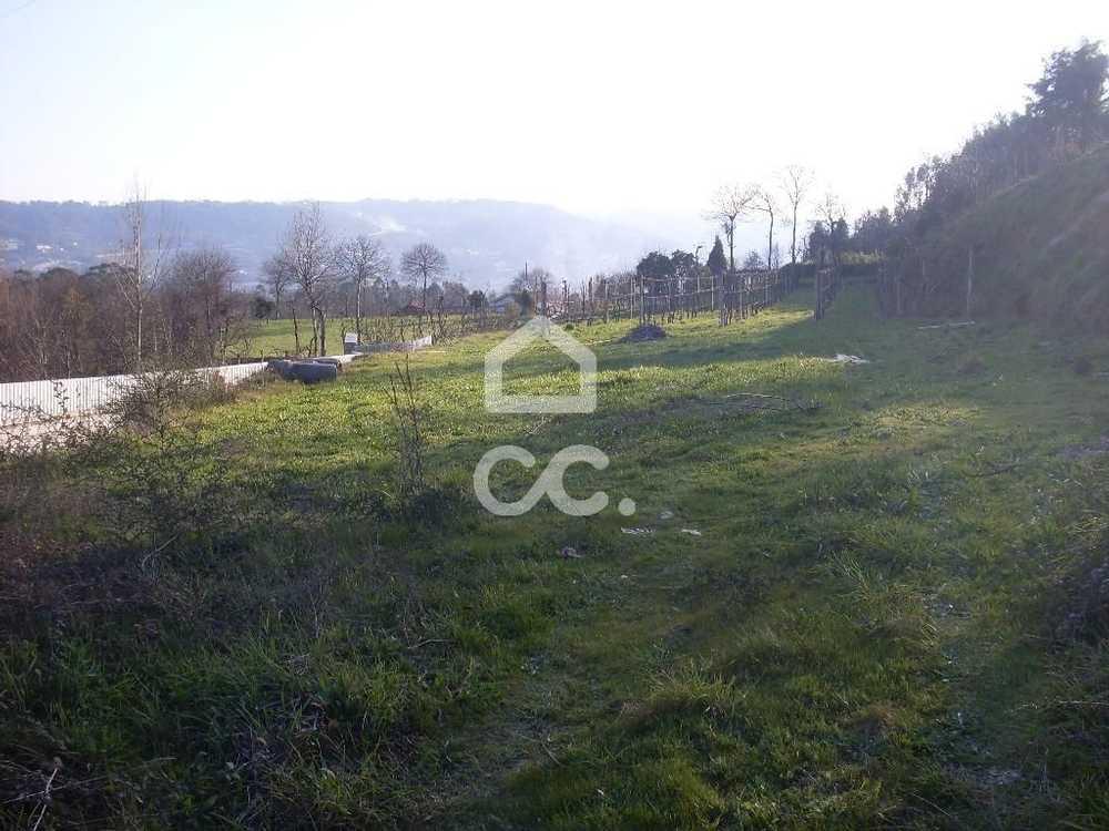 Gémeos Guimarães terrain picture 77535