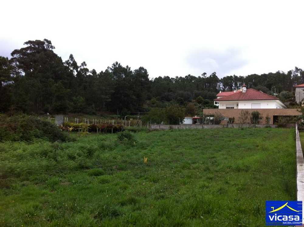 Vilar de Murteda Viana Do Castelo terrain picture 58475