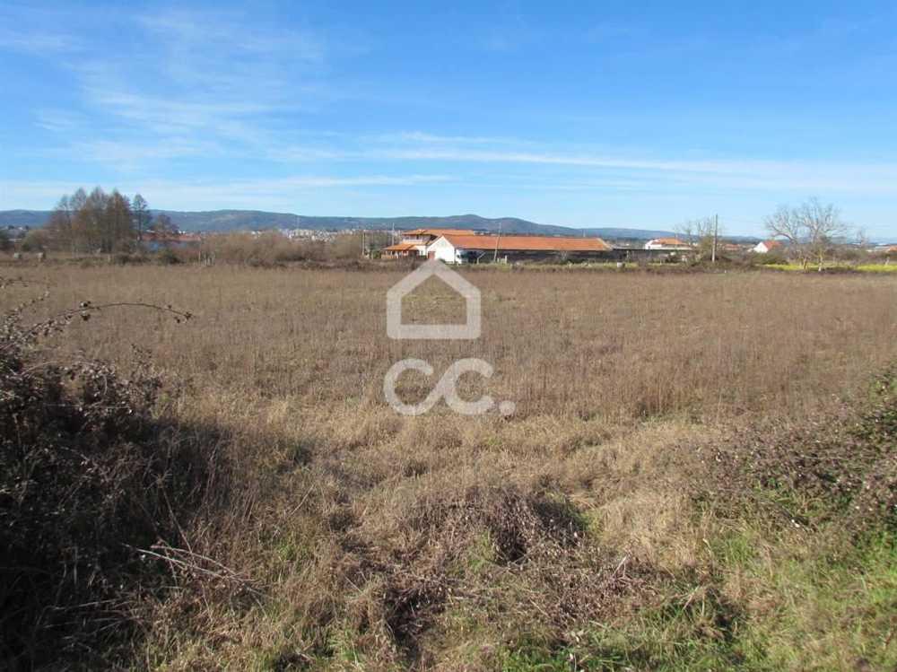 Faiões Chaves terrain picture 74384