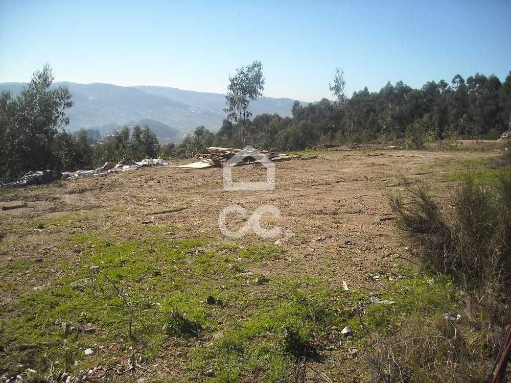 Gémeos Guimarães terrain picture 77461
