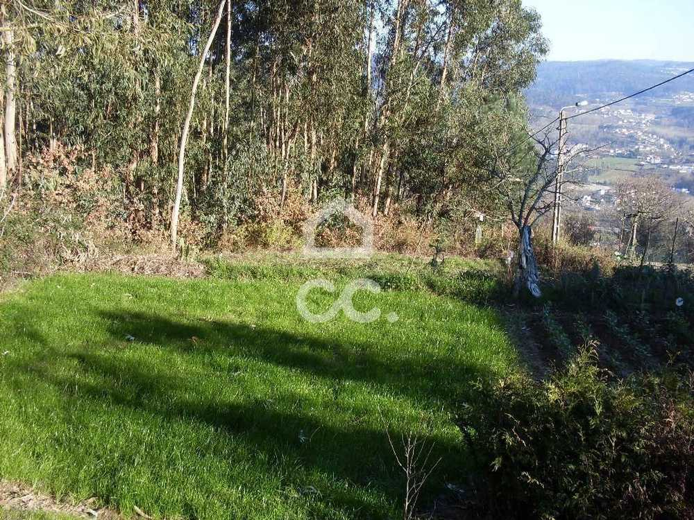 Calvos Guimarães terrain picture 77466