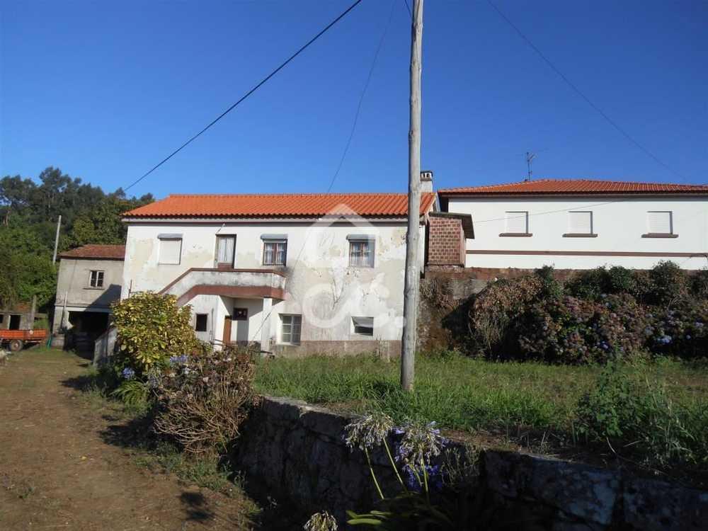 Loivo Vila Nova De Cerveira house picture 79412