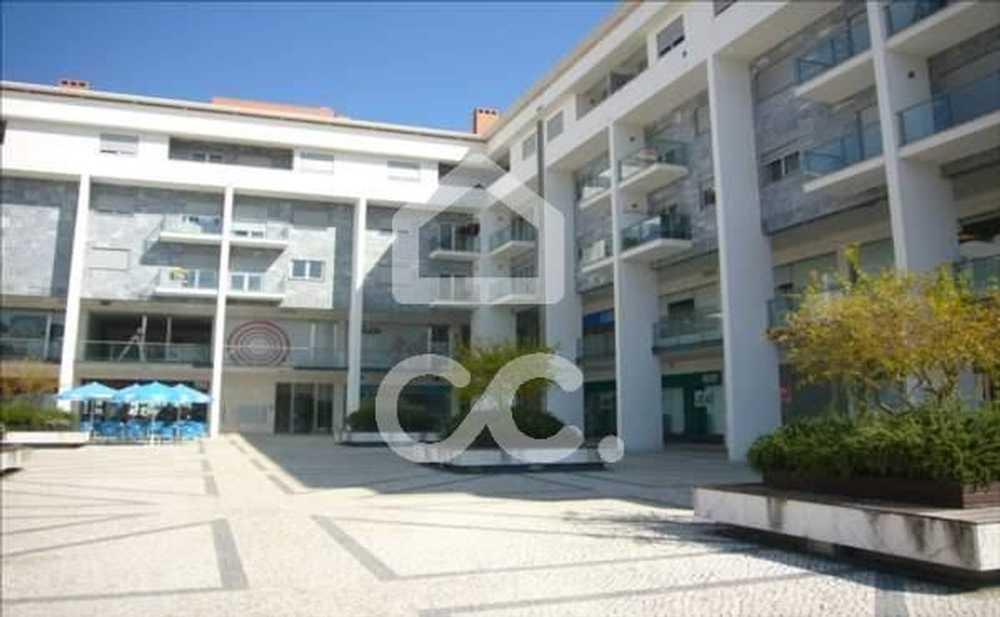 Campo Amarelo Leiria house picture 78236
