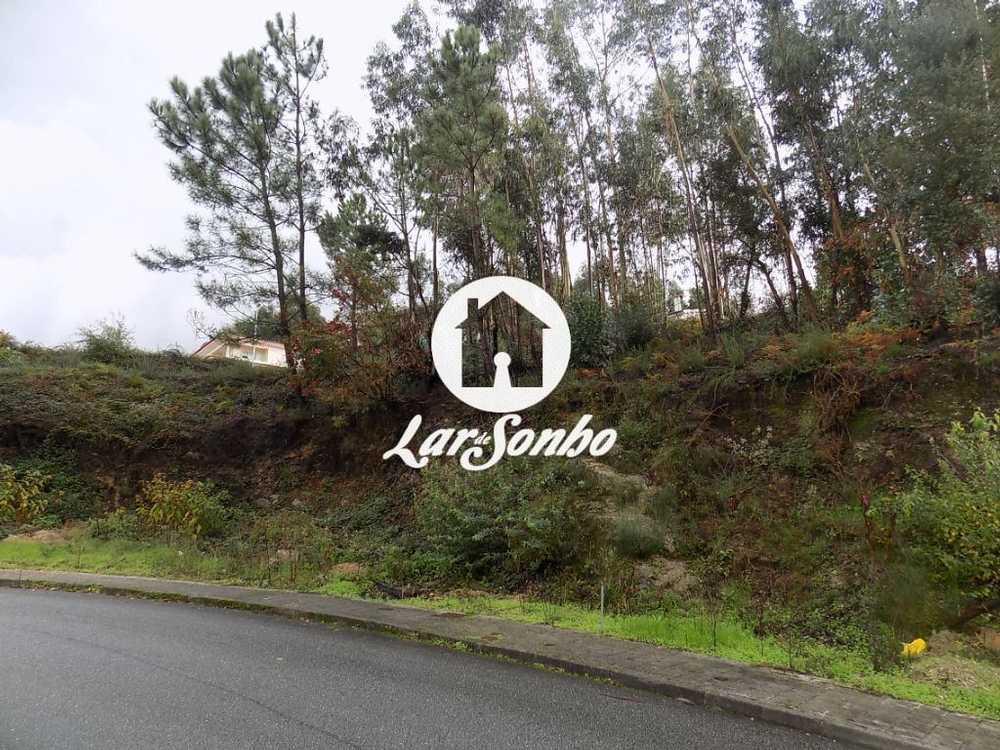 Brufe Vila Nova De Famalicão terrain picture 56635