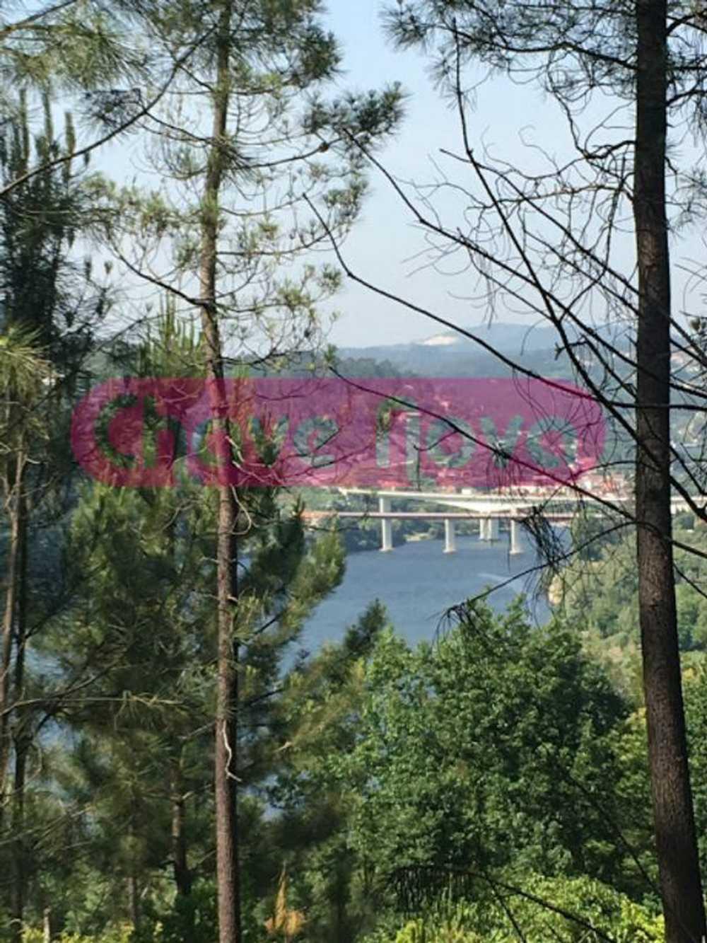 Bairros Castelo De Paiva terrain picture 66028