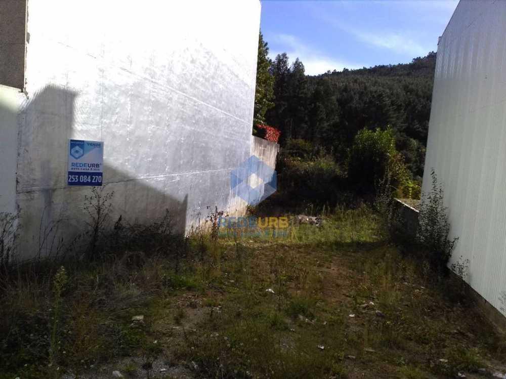 Nogueira Bragança terrain picture 68634
