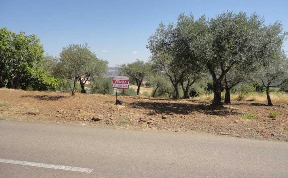 Samil Bragança terrain picture 68460