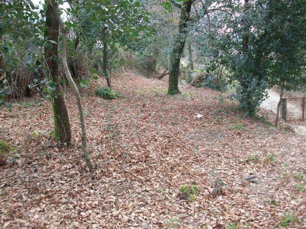 Serzedelo Póvoa De Lanhoso terrain picture 58107