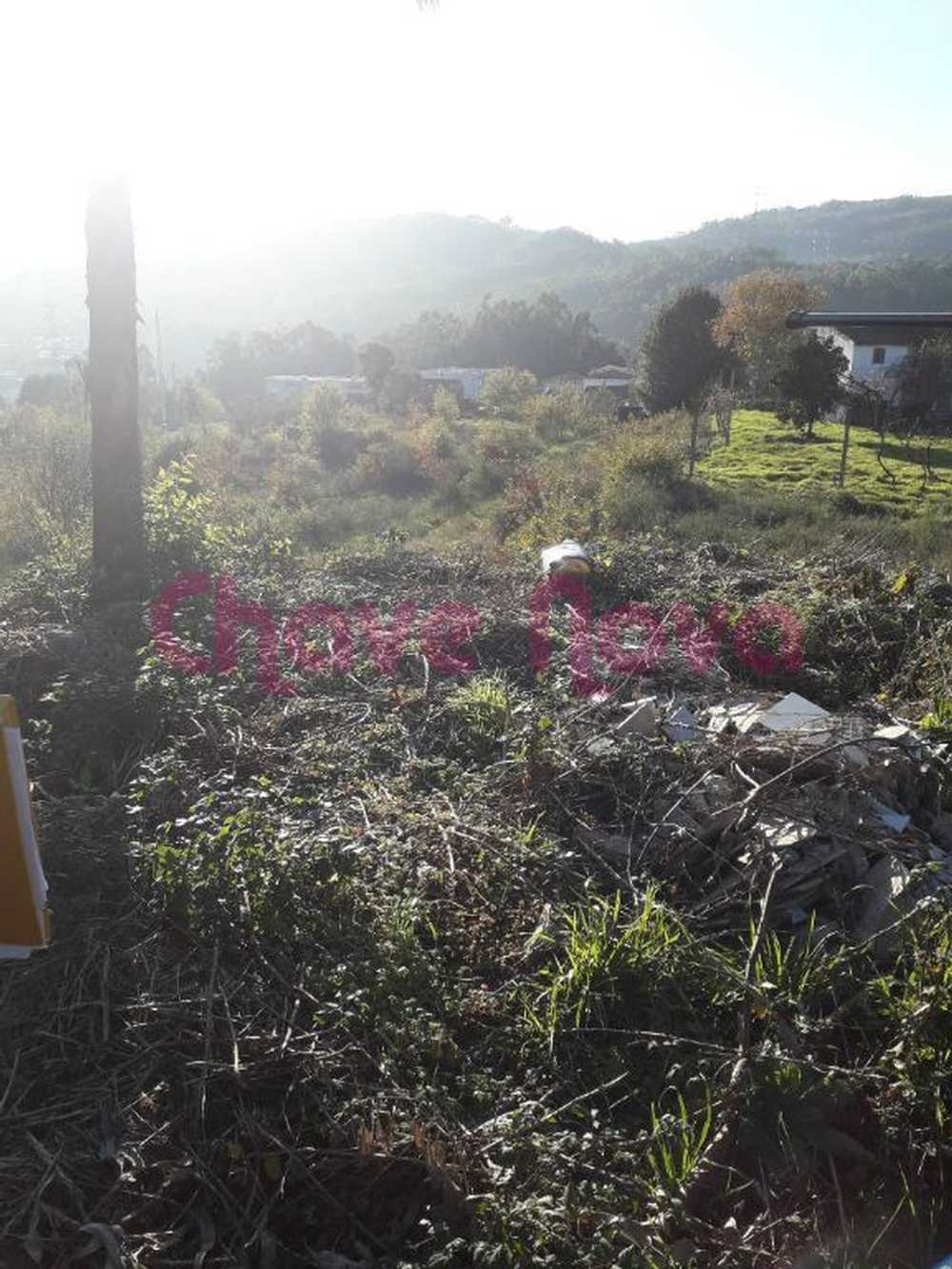 Vila Cova Penafiel terrain picture 70641