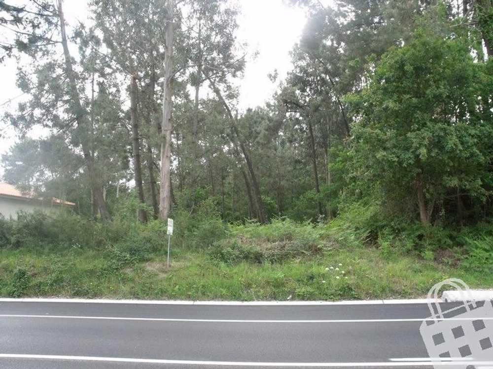 Nogueira Vila Nova De Cerveira terrain picture 79542