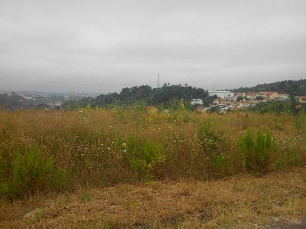 Paúl Coimbra terreno foto #request.properties.id#