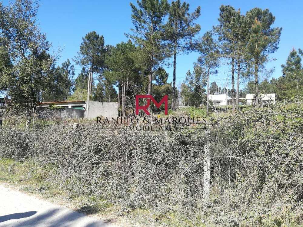 Corredoura Paredes De Coura terrain picture 84531