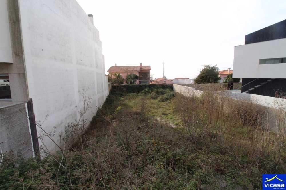 Moreira de Geraz do Lima Viana Do Castelo terrain picture 58402