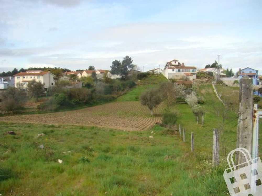 Vale de Anta Chaves terrain picture 74138