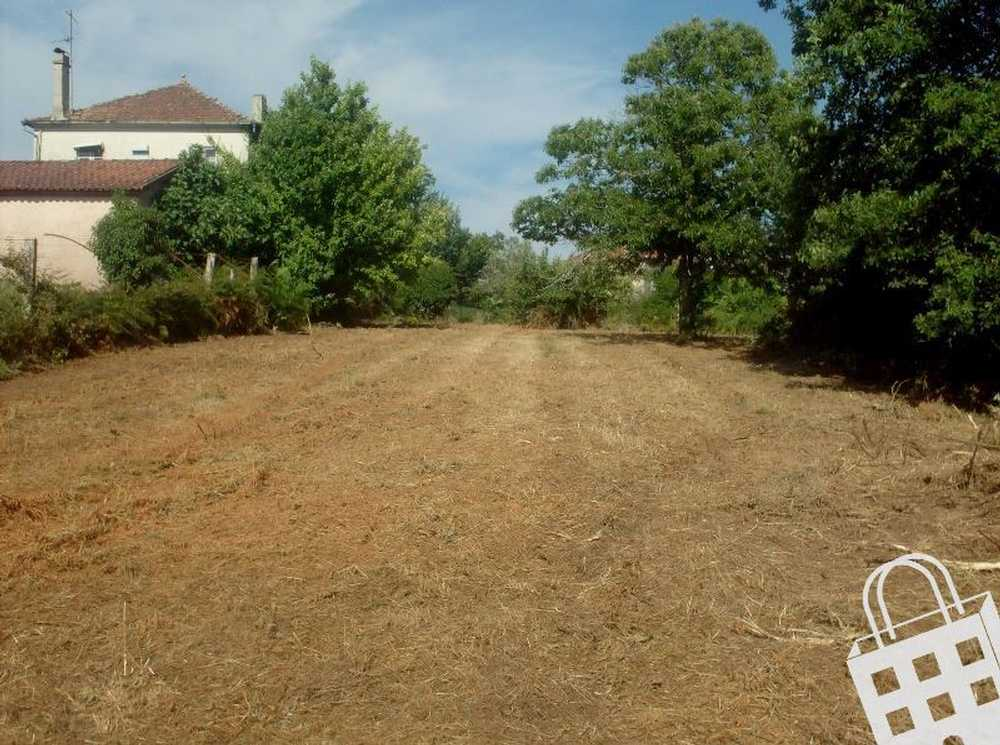 Silva Valença terrain picture 79511