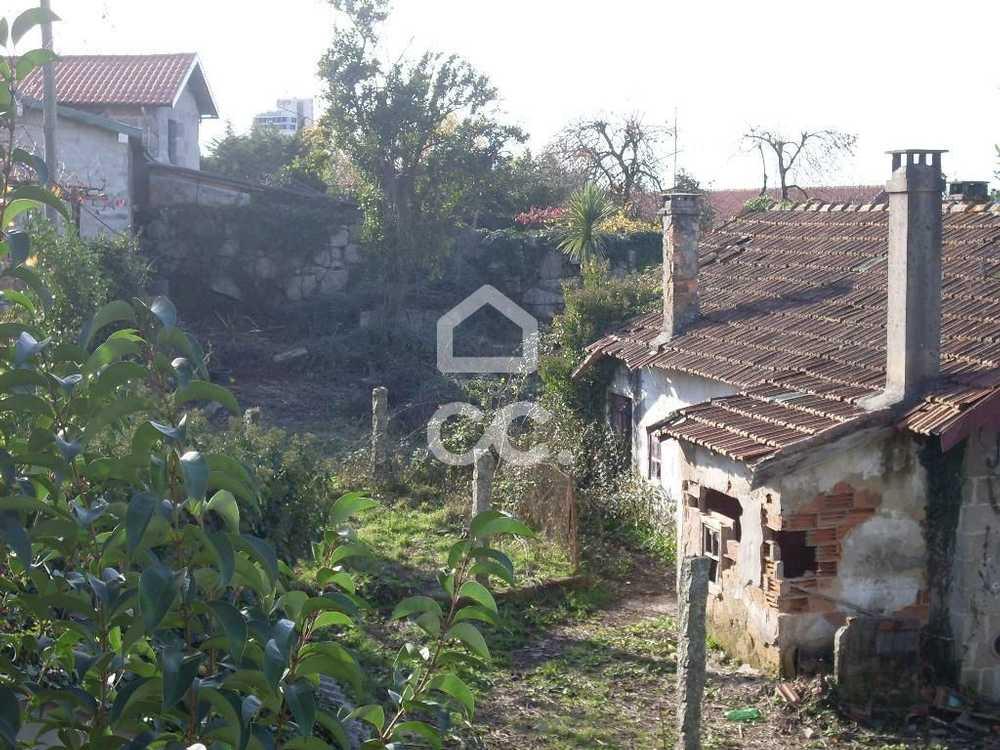 Guimarães Guimarães terrain picture 77432