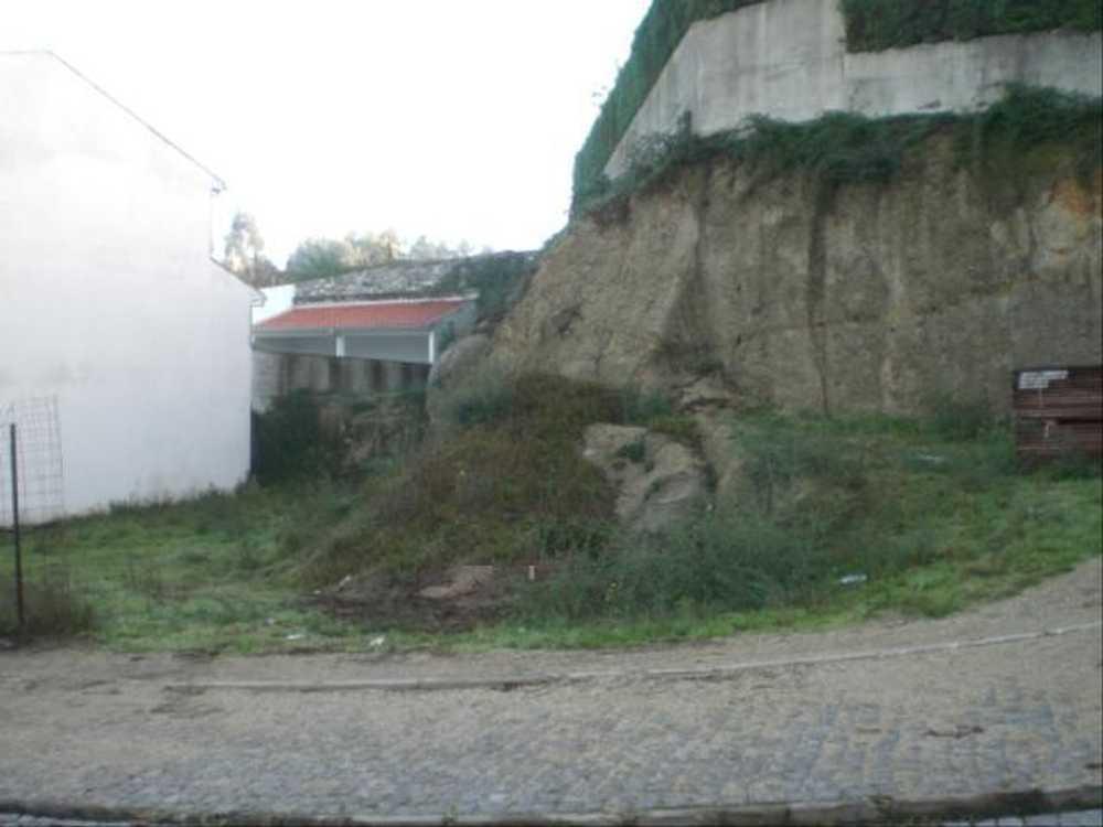 Gondar Guimarães tomt photo 57366