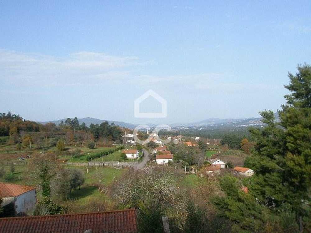 Silva Valença terrain picture 79528