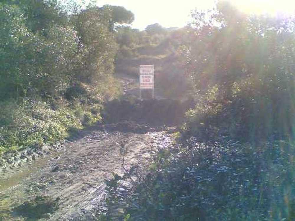 São João das Lampas Sintra terrain picture 55712