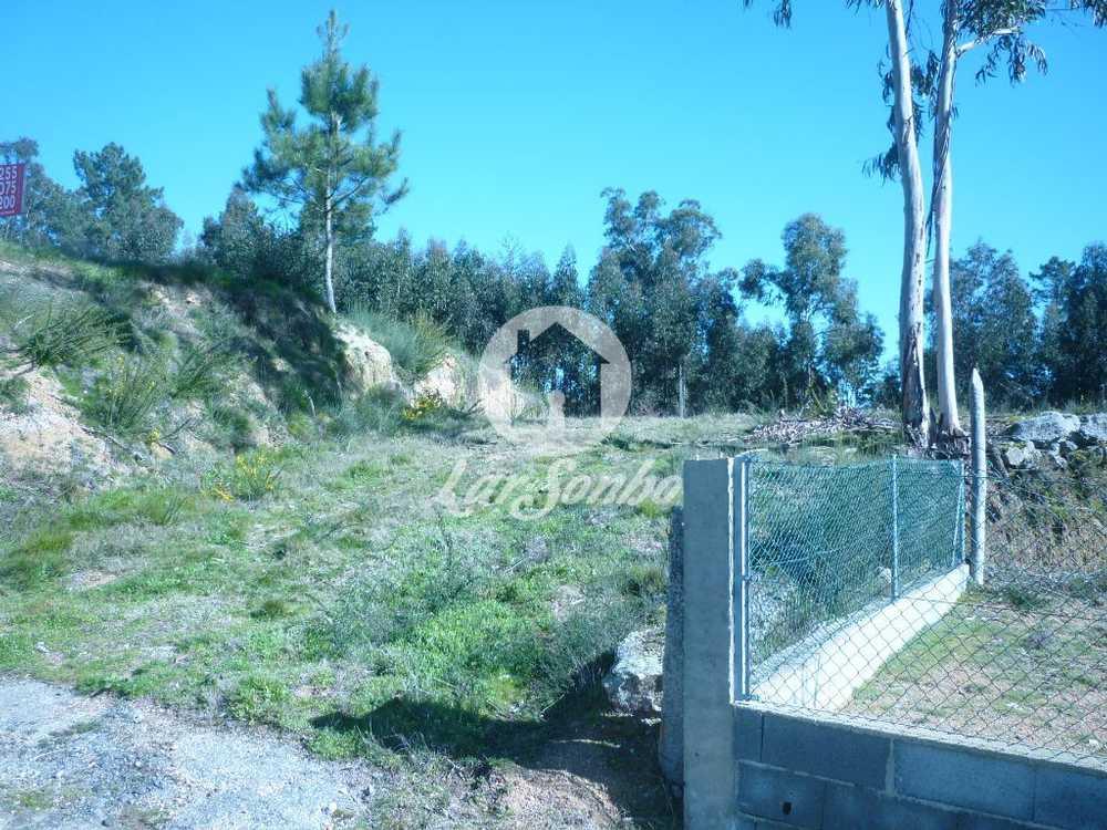 Boim Lousada terrain picture 57136
