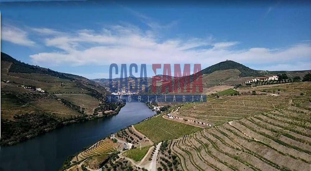Covas do Douro Sabrosa house picture 82889
