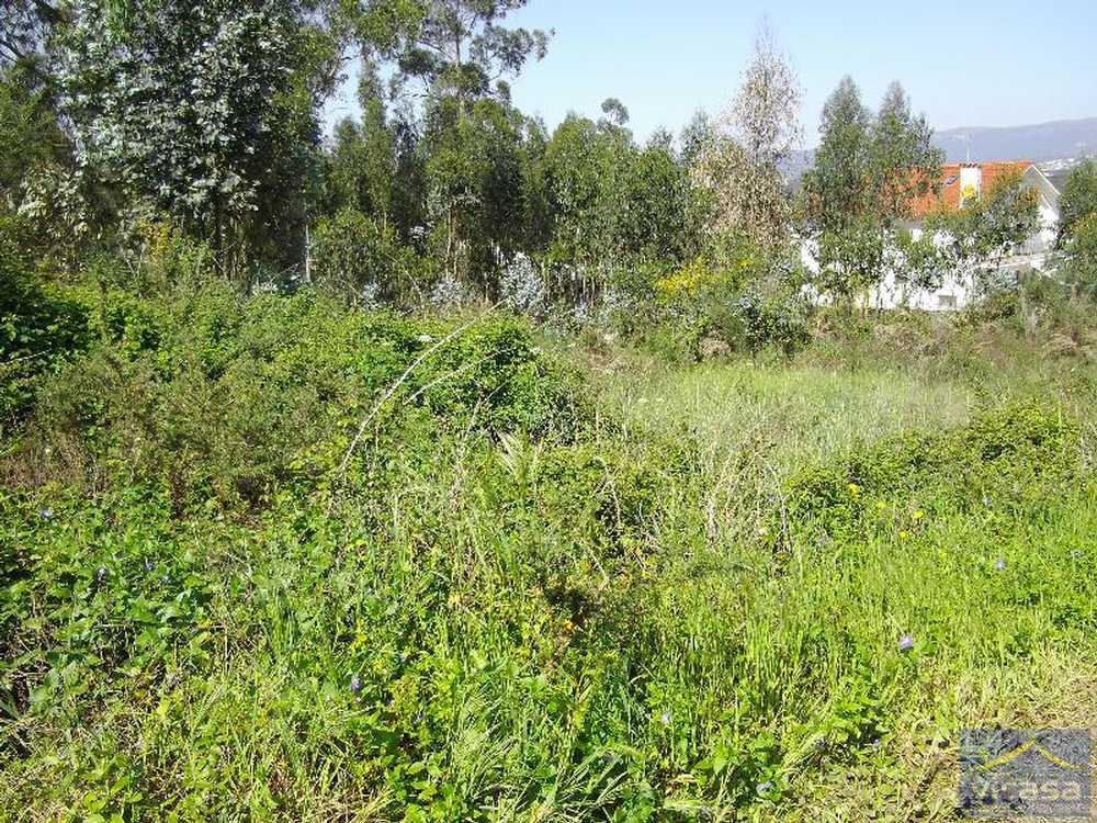 Deocriste Viana Do Castelo terrain picture 58456