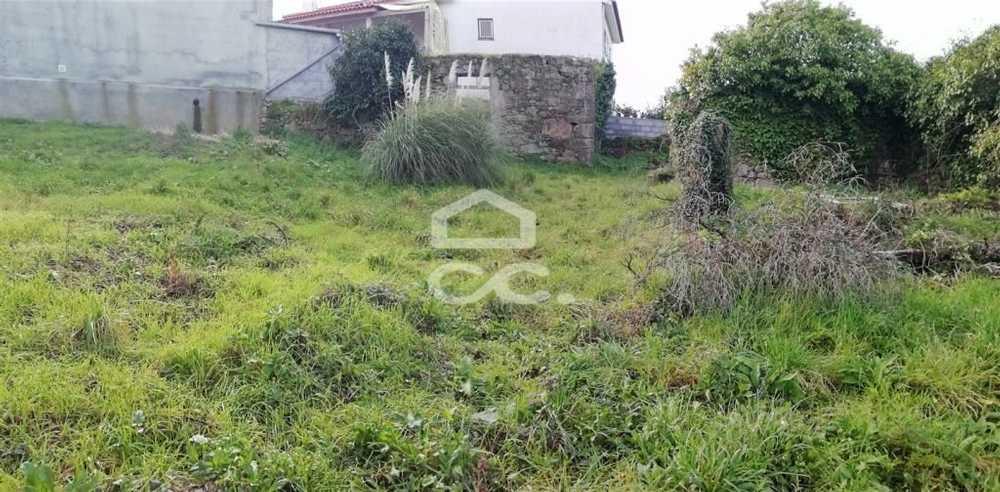 Fontoura Valença terrain picture 79416