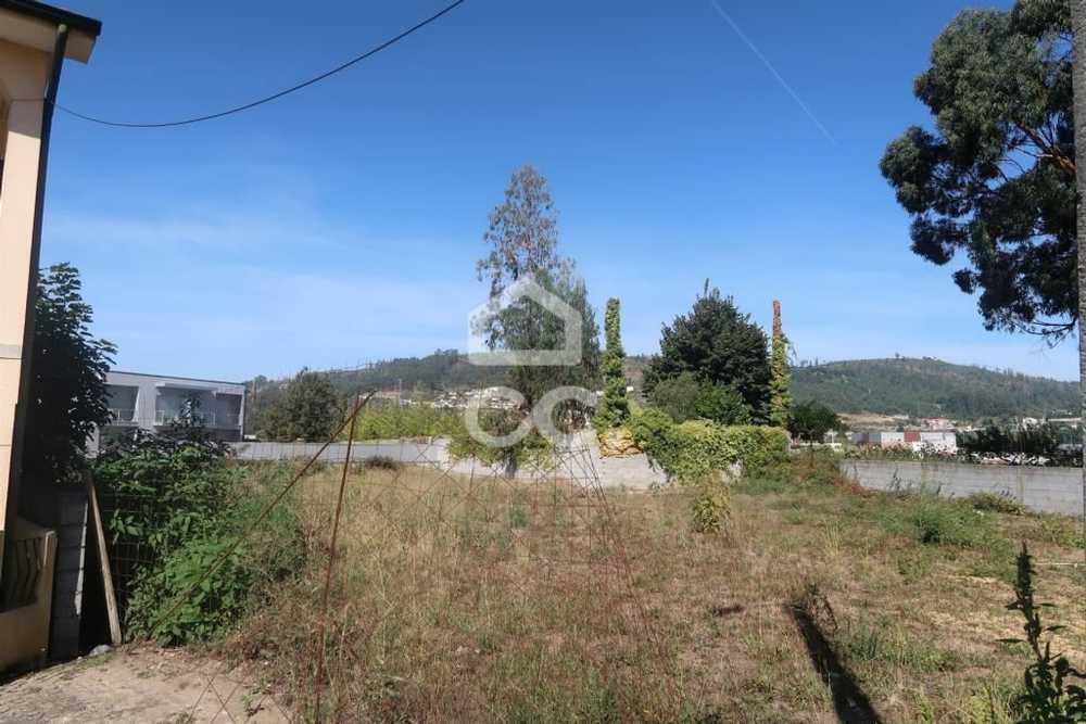 Bouça Velha Paredes De Coura terrain picture 77944