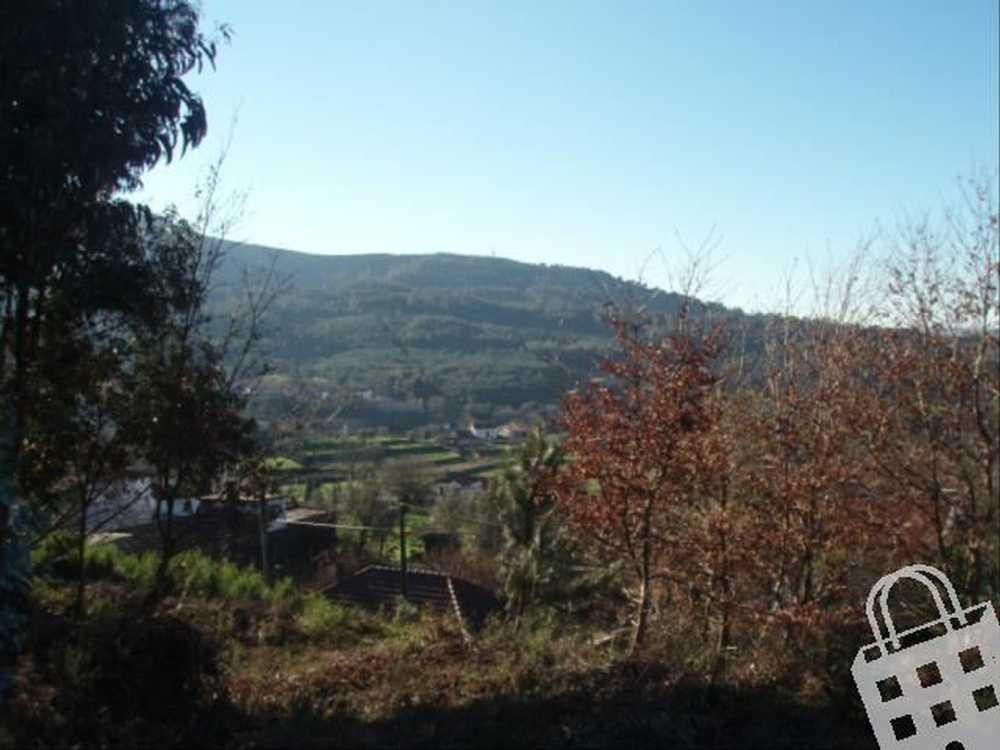 Cornes Vila Nova De Cerveira terrain picture 79494