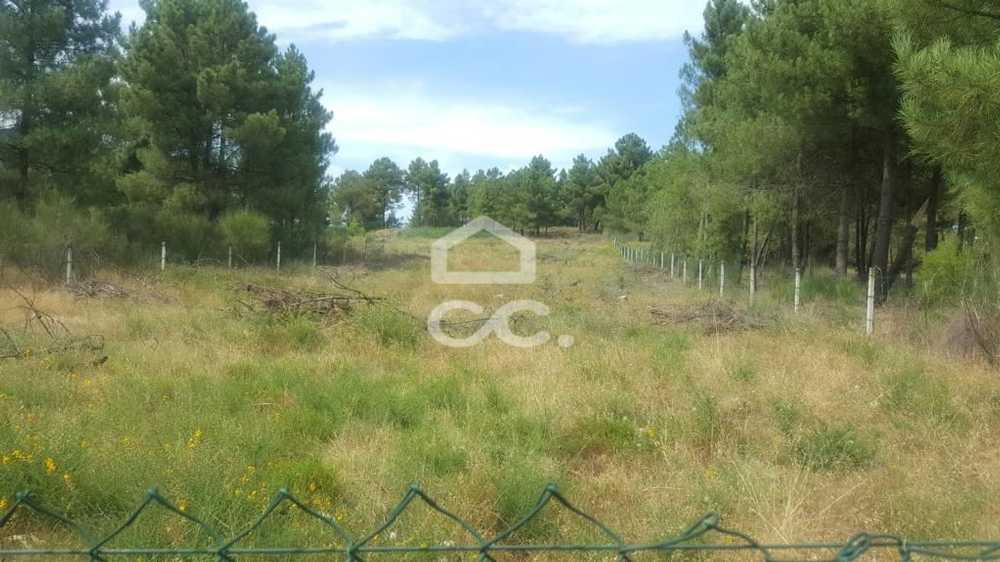Vale de Anta Chaves terrain picture 74329