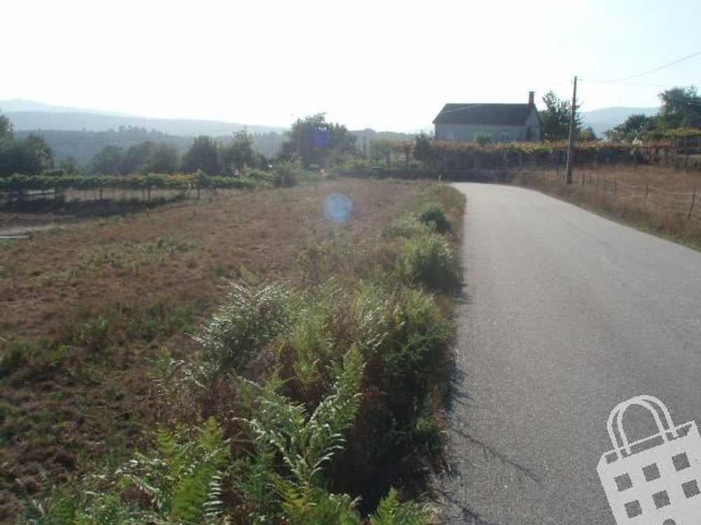 Arroteia Paredes De Coura terrain picture 79480