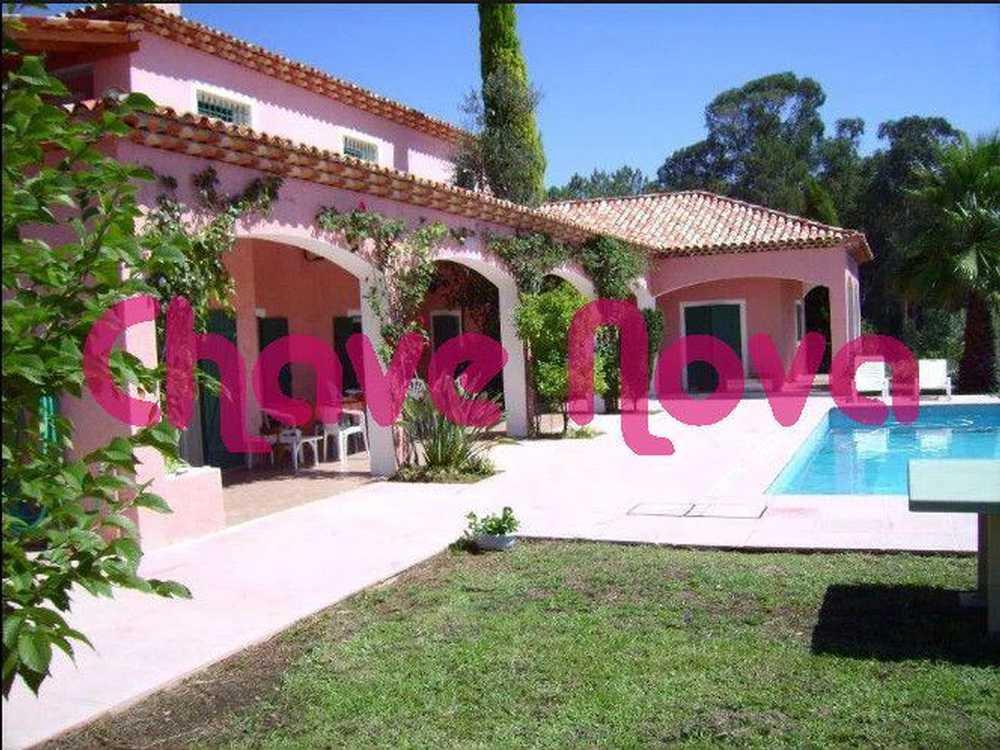 Sangalhos Anadia house picture 66853