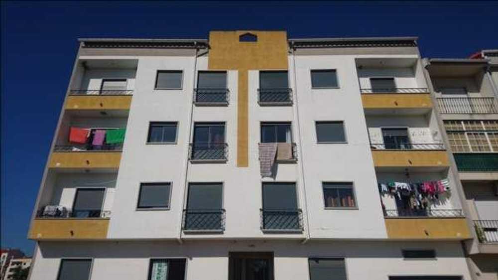 Alcains Castelo Branco apartment picture 63898