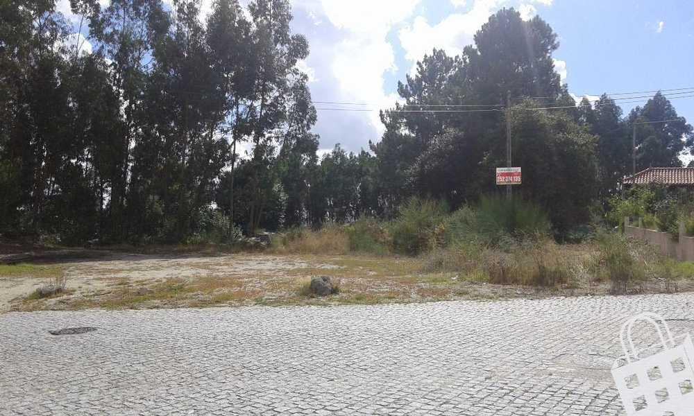 Vermoim Vila Nova De Famalicão terrain picture 74805