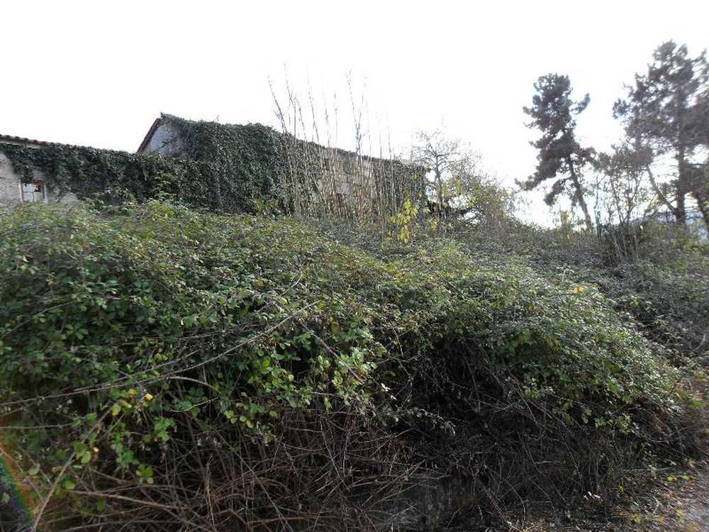 Sande Vila Nova Guimarães terrain picture 57383