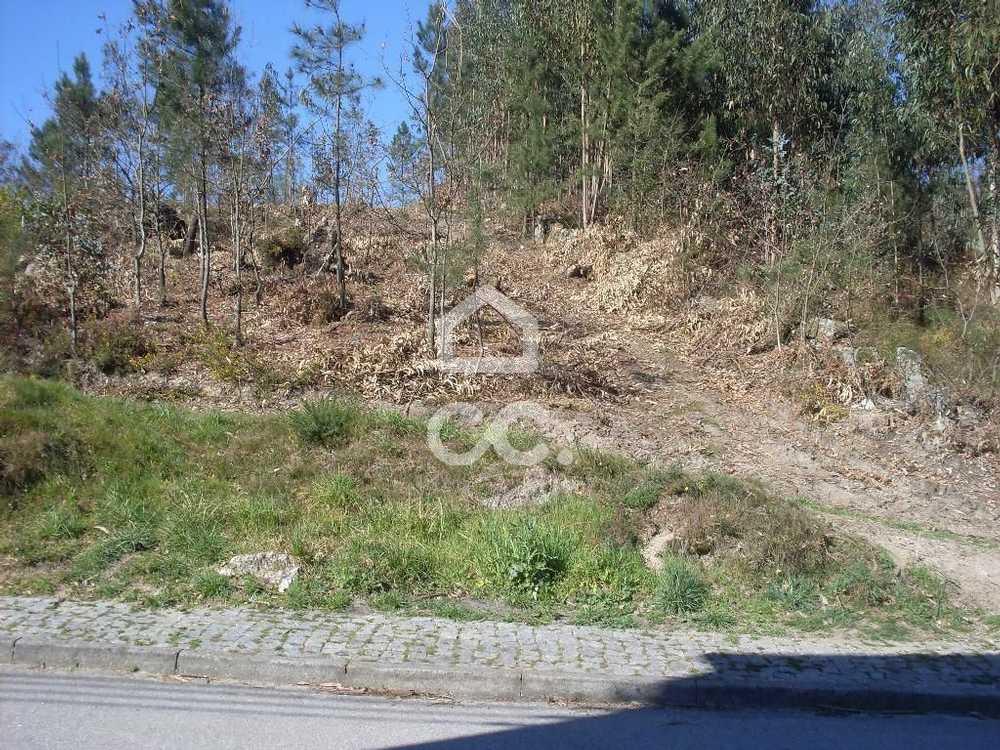 Lordelo Guimarães terrain picture 77415