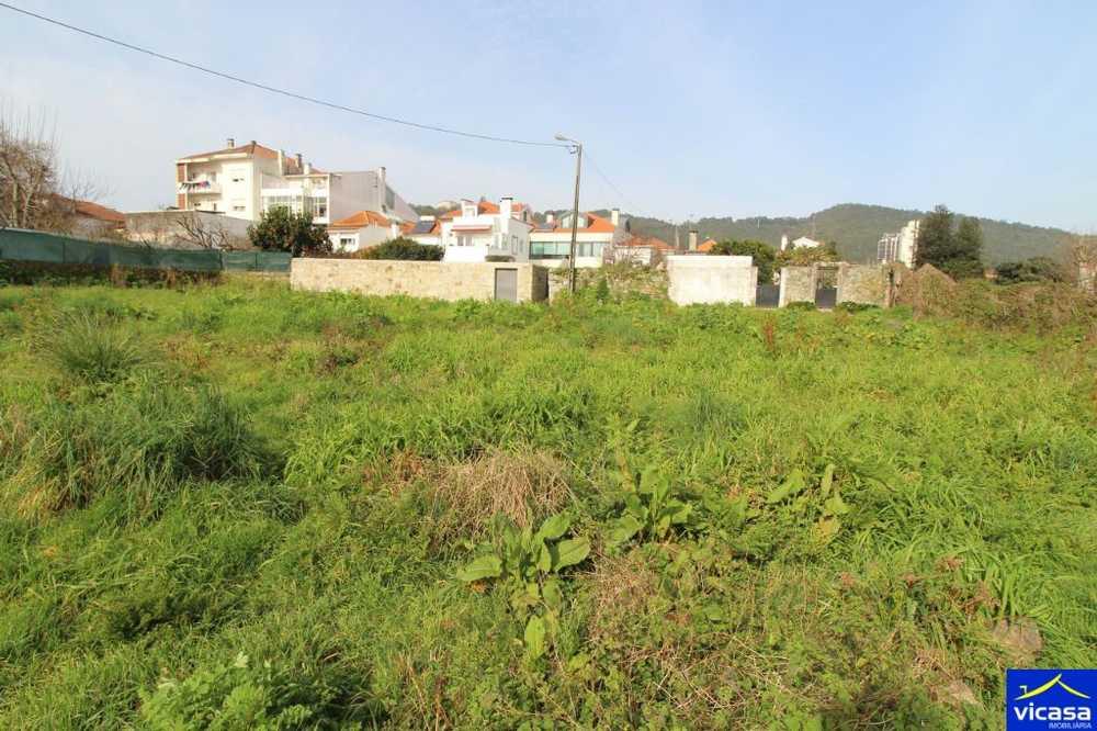 Vila Nova de Anha Viana Do Castelo terrain picture 58619