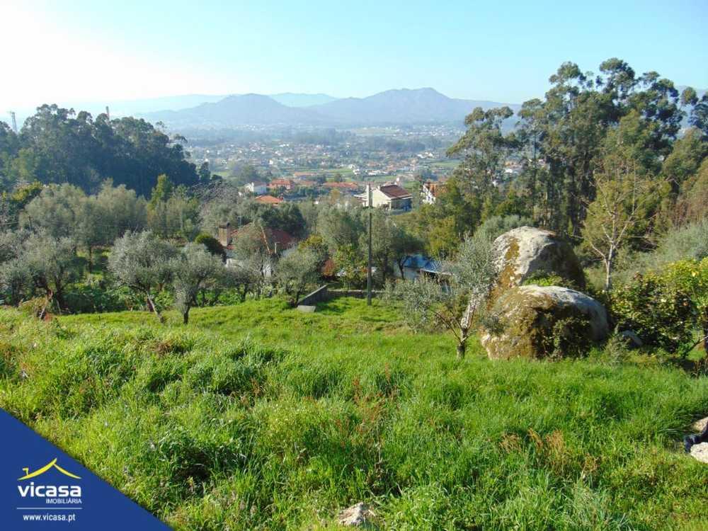 Deão Viana Do Castelo terrain picture 58644